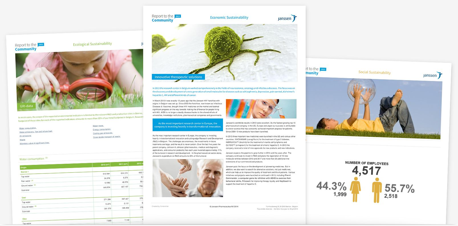 Janssen 2013 - print optimization